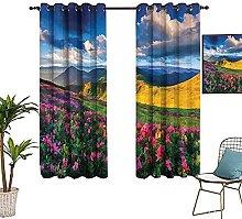 ZLYYH tende da finestra Blu cielo fiori montagne