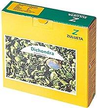 Zulueta – Dichondra Repens, tappezzeria
